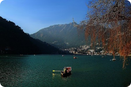 Flora and Fauna of Nainital